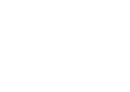 Litis Data